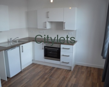 Clyde Court (Professional - Furnished)